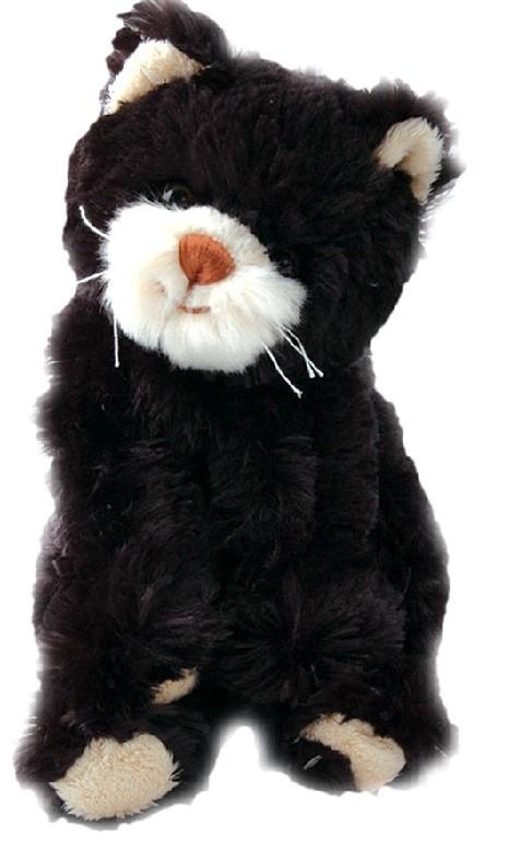 dobré černé kočička obrázky zdarma domácí stříkací videa